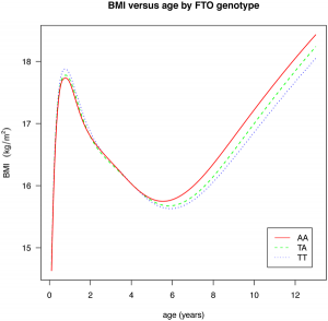 BMI versus age by FTO genotype