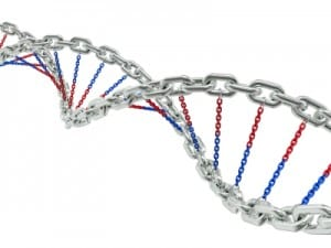 DNA-chains