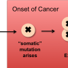 The Molecular Barcode of Cancer — Targeting Treatment to Patient
