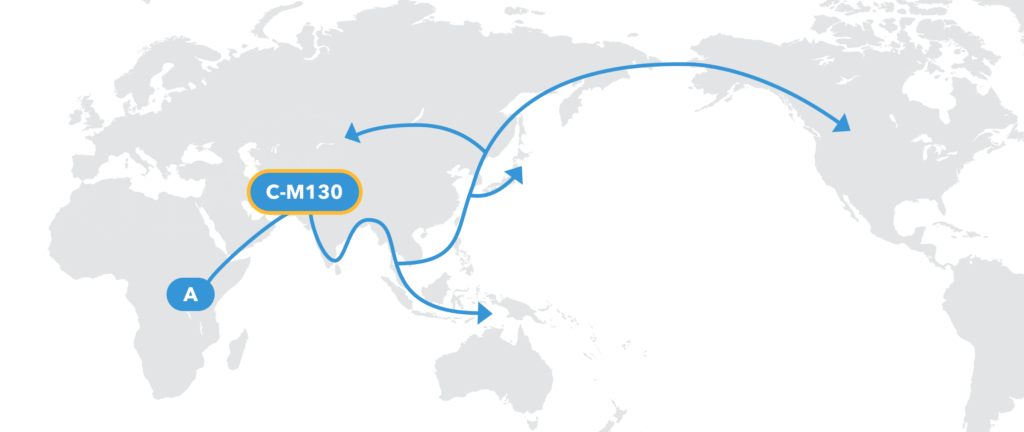 The Paternal-Line Story Written In Your DNA - 23andMe Blog