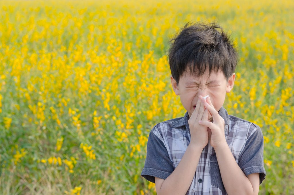 Boy blowing his nose in a field of flowers.